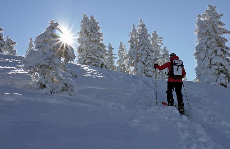 Aufstieg mit dem Splitboard am Feldalpenhorn